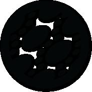 Lavatrici Sangiorgio - Cestello Pearl Drum