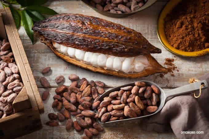 Pasqua Uova di Cioccolata Fave di Cacao