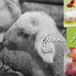 Pasqua Festa di Primavera Cover