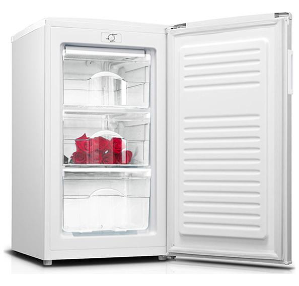 Congelatore Verticale Zerowatt ZTUP 130 64Lt A+ Interno
